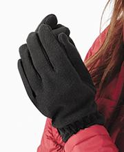 https://www.regoli.info/catalog/caps/images_ante/b296_superfleece_alpine_gloves