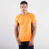 https://www.regoli.info/catalog/t-shirt-sprintex/images_mini/SP101